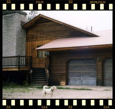 callanan wood restoration 1